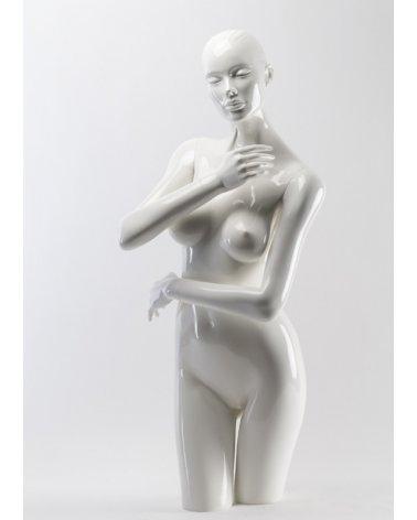 Torso Mujer erotico