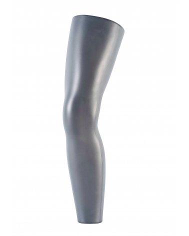 Long Leg Display, Orthopedic
