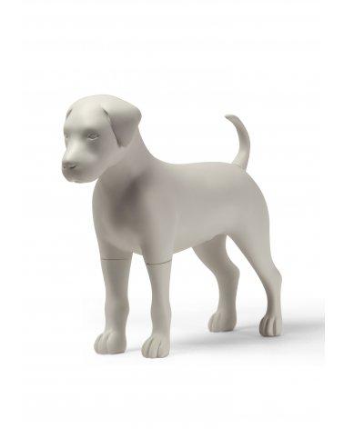 Max Dog